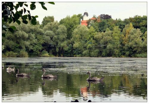 Озеро в парке.