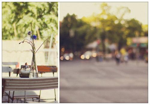Цветы в кафе