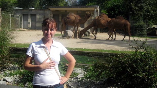 В берлинском зоопарке.