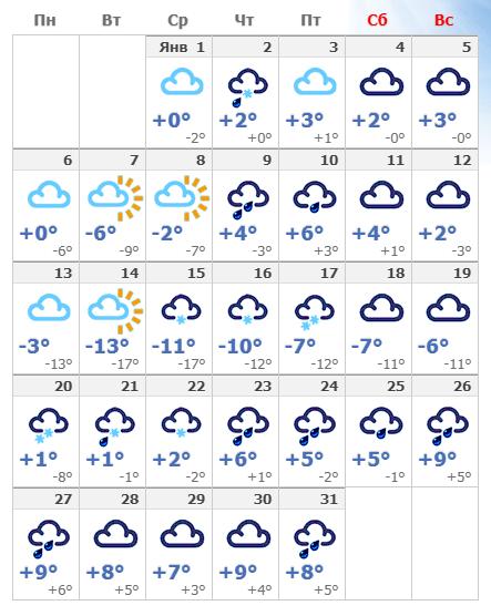 Погодные условия в столице Германии в январе 2020 года.